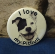 Button I love my pitbull comics