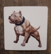 Magnet American Bully